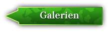 Button Galerie